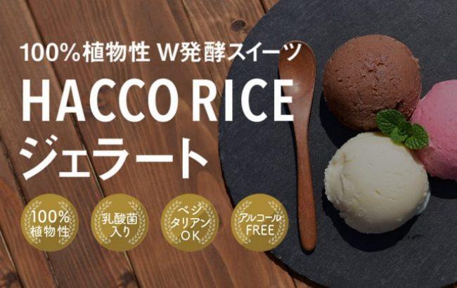 糀と酵母と乳酸菌で発酵した植物性ジェラート『Hacco RICE ジェラート』。急増するインバウンドに向けて飲食店での取り扱い募集開始。食べる美容液と言われる酒粕をアレンジした日本由来の発酵スイーツ
